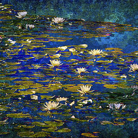 Phyllis Denton - Amid The Lily Pads
