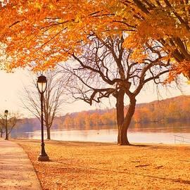 Marla McPherson - Amidst Falling Leaves