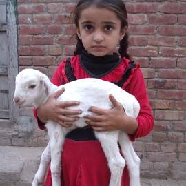 Bobby Dar - Amina and her goat