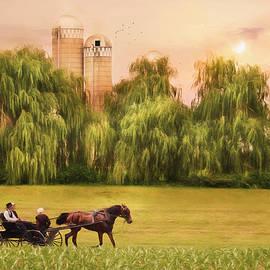 Lori Deiter - Amish Buggy Ride