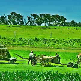 Bill Cannon - Amish Gathering Hay