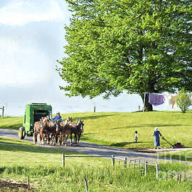 David Arment - Amish Horses Pulling Hay Baler