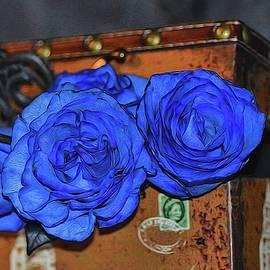 Diana Mary Sharpton - Amore Blu