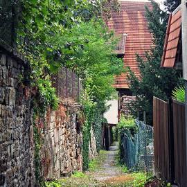 Sarah Loft - An Alley in Schwaigern