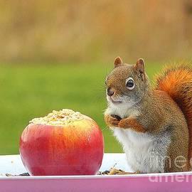Karen Cook - An apple a day