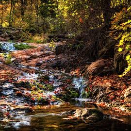 Saija Lehtonen - An Arizona Autumn Creekside