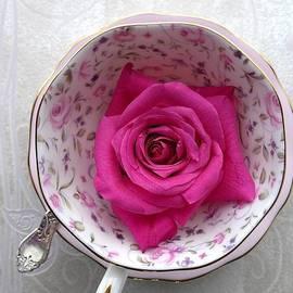 Alison Burford - Pink Rose Nestled In A Rose China Teacup