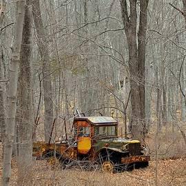 Kurt Von Dietsch - An old truck in the woods.