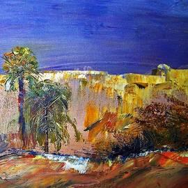 Patricia Taylor - Ancient Desert Walls