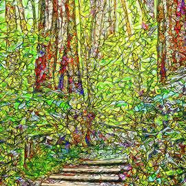 Joel Bruce Wallach - Ancient Forest Path - Tamalpais California