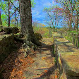 Michael Rucker - Ancient Pathway