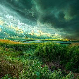 Phil Koch - And For A Moment It Was Silent
