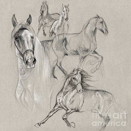 Marilee Spencer - Andalusian Sketches
