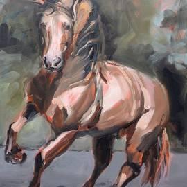 Donna Tuten - Andalusian Stallion