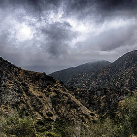 Joseph Hollingsworth - Angeles National Forest 2a