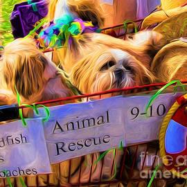 Kathleen K Parker - Animal Rescue NOLA