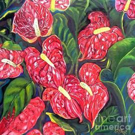 Caroline Street - Anthurium Flowers