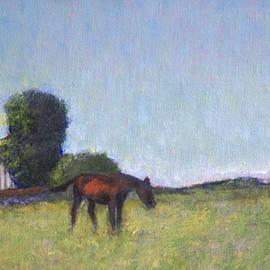David Zimmerman - Antietam Horse Farm