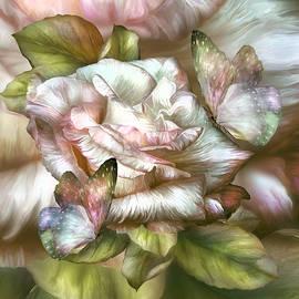 Carol Cavalaris - Antique Rose And Butterflies