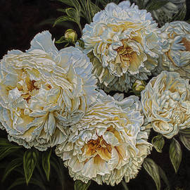 Fiona Craig - Antique White Peonies