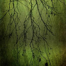 Randi Grace Nilsberg - Apoptosis