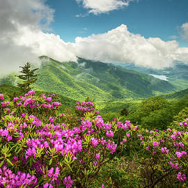 Dave Allen - Appalachian Mountains Spring Flowers Scenic Landscape Asheville North Carolina Blue Ridge Parkway