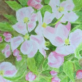 Stephanie Grant - Apple Blossom, Spring Herald