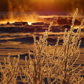 Dianne Cowen - Arctic Sea Smoke Sunrise