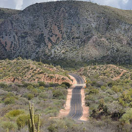 Gordon Beck - Arizona Byway