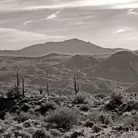 Gordon Beck - Arizona Morning
