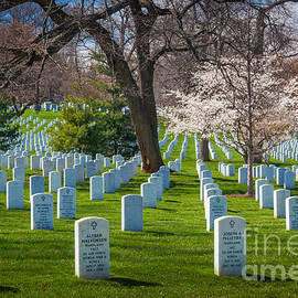 Inge Johnsson - Arlington National Cemetery