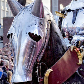 Linsey Williams - Armoured Horse And Knight