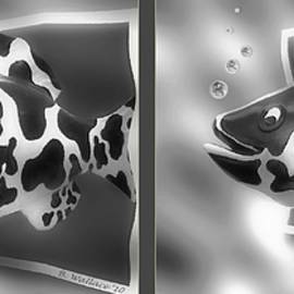 Brian Wallace - Art Fish - Gently cross your eyes and focus on the middle image that appears