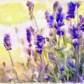 Catherine Lott - Art Floral