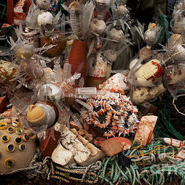 Ivete Basso Photography - Art of Recycling