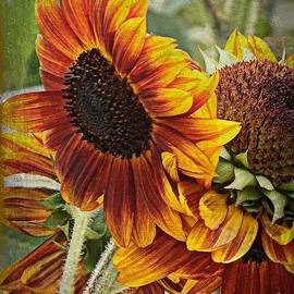 Bobbee Rickard - Art of the Sunflower Painting