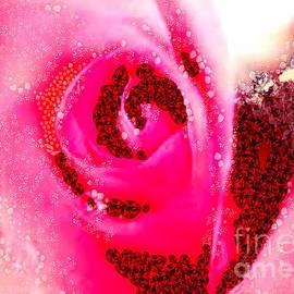 Catherine Lott - Art Rose Elite In Asgelmint