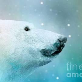 Janette Boyd - Artic Polar Bear
