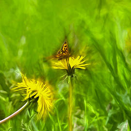 Leif Sohlman - Artistic painterly Butterfly 1 On Dandelion