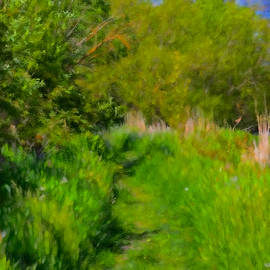 Leif Sohlman - Artistic painterly Pathway May