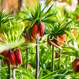Artistic Paiterly Crown-imperial