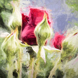 Leif Sohlman - Artistic Rose and buds