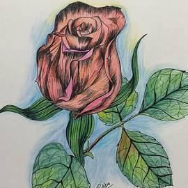 Pushpa Sharma - Artistic Rose