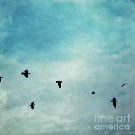 Priska Wettstein - As the ravens fly