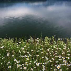 Debra Fedchin - Ashokan Reservoir