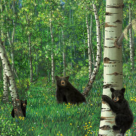 Stanza Widen - Aspen Bear Nursery