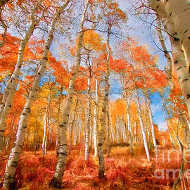 Carolyn Rauh - A Burst of Fall Foliage