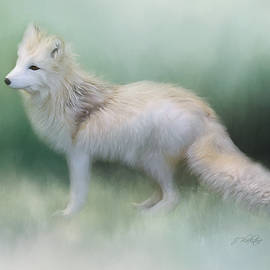 Jordan Blackstone - At The Centre - Arctic Fox Art