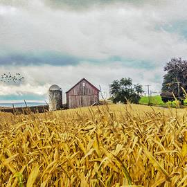 Cathy Kovarik - At The Farm