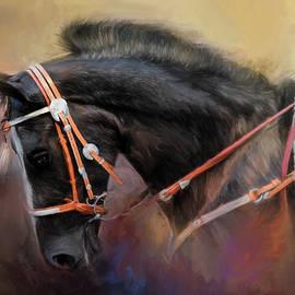 Jai Johnson - At The Horse Show 3